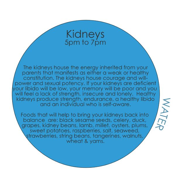 TCM - 24-hour Organ Qi Cycle - kidneys