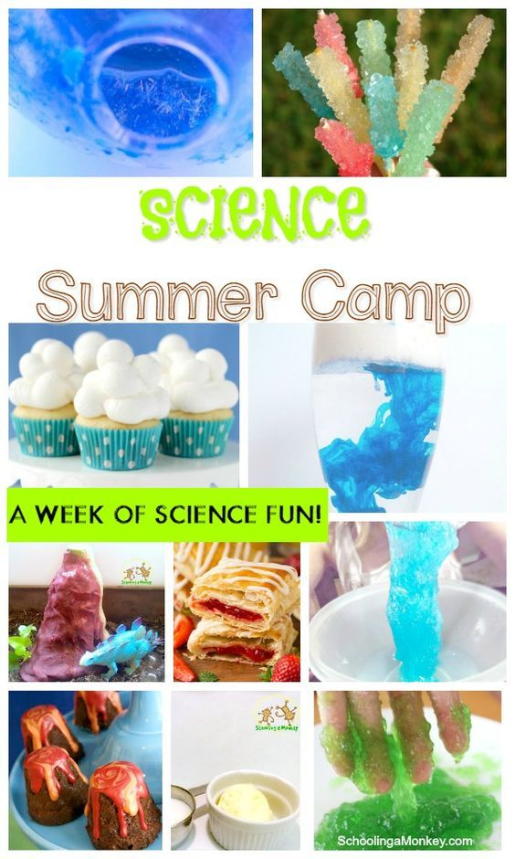 Love the idea of science summer camp but don't have the funds? You can create your own DIY science camp for your kids with these summer science camp ideas!