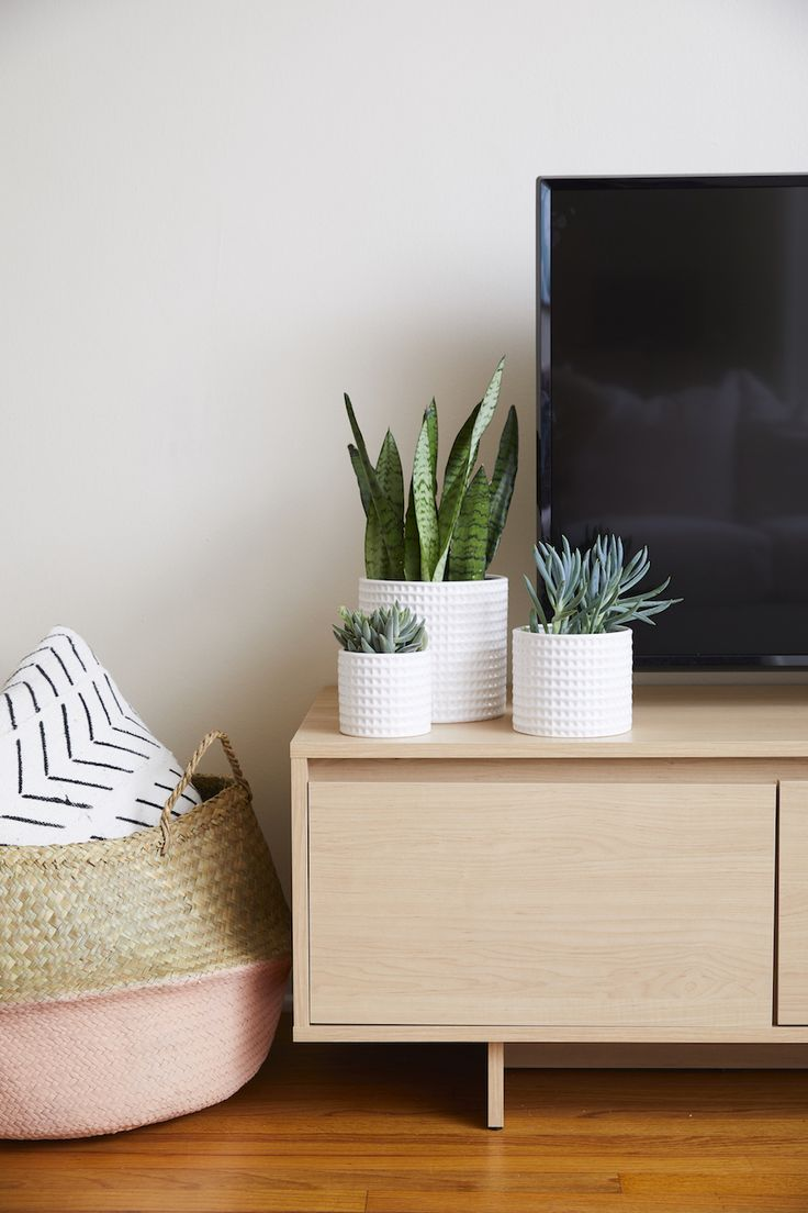 modern white potted plants accent a tv credenza | Photography: Nicole Gerulat