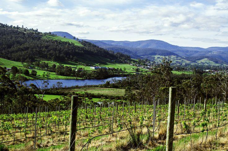 Huon Valley, Tasmania.
