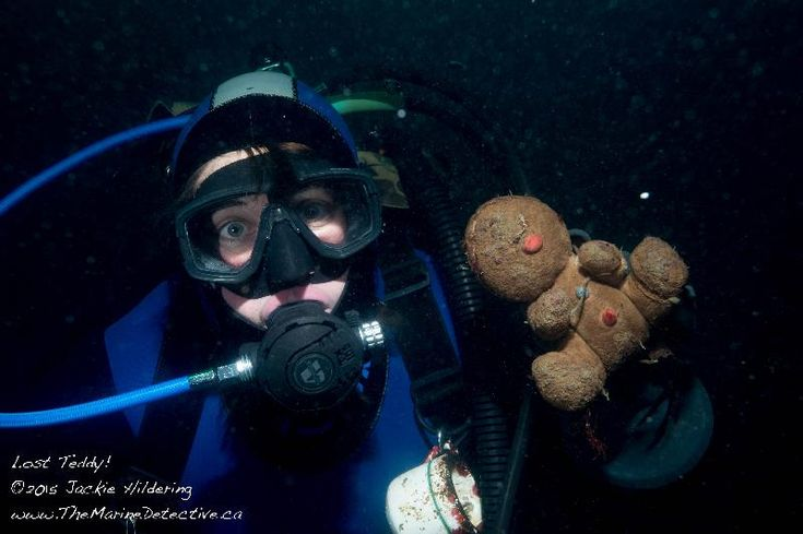 Found on 01 Jan. 2016 @ Seagate Dock, Port Hardy, British Columbia. World's saddest teddy? Found at bottom of the Ocean in Port Hardy. Unlike so much of the debris near the dock, it is unlikely this little guy was purposely tossed away. Wouldn't it be something to ... Visit: https://whiteboomerang.com/lostteddy/msg/tsfenz (Posted by The Marine Detective on 02 Jan. 2016)