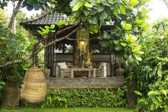 """Our bungalows are simple and authentic. Just the way we like to live. True Bali style. """"Brahma Bungalow"""" is nestled behind this beautiful big tree which gracefully works as a place for our hanging wicker chairs. Bliss."""