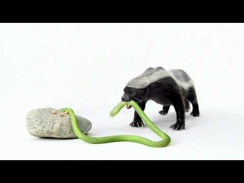 Pistachio ad featuring the honey badger. haha.