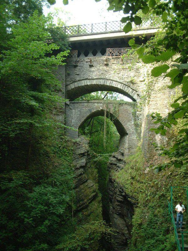 Woodlands Devils Bridge