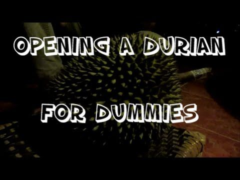 HOW TO OPEN A DURIAN FOR DUMMIES!!!-This Fresh Family Daily Internationa...