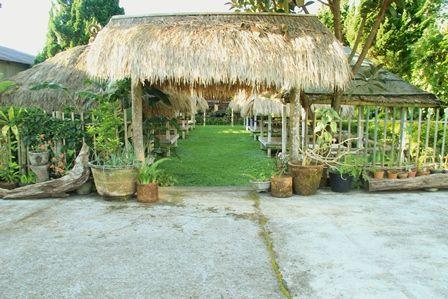 Front - Resto Cemara Bedugul, Bali