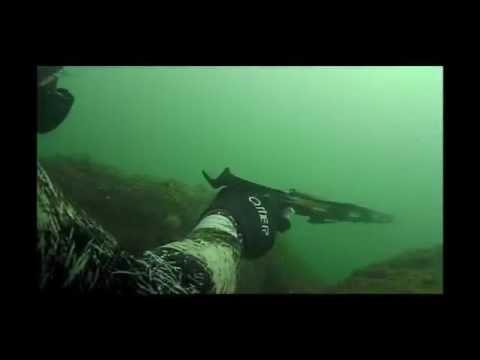 Brandeggio Falco Extreme1-90 Sea Hawk Sub