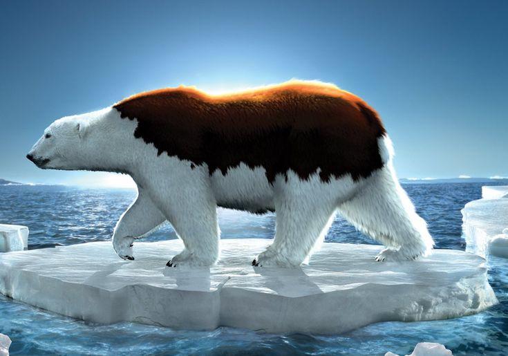 la hiperbole está en que exagera en el calentamiento global tanto que hasta destiñe el color del oso polar