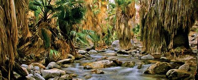 Tahquitz Canyon in Palm Springs... glad to report that we did this hike last time we were in Palm Springs. One down... the world to go!
