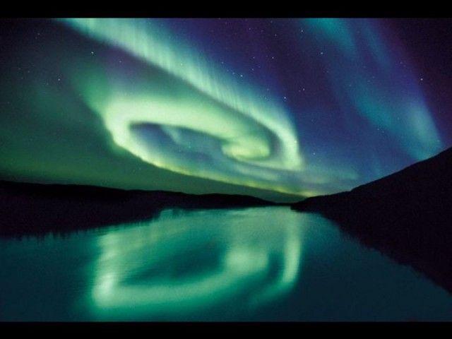 immagini-natura-animali-piu-belle-ultimi-dieci-anni-29-640x480.jpg (640×480)