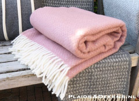 Plaid Vega roze