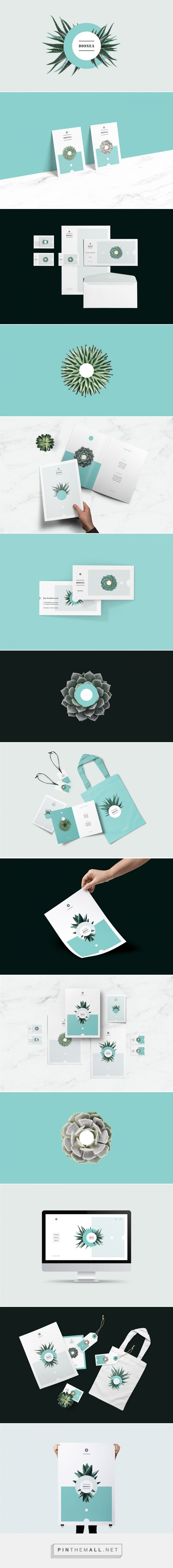 Dionea Branding by Przemek Bizori | Fivestar Branding Agency – Design and Branding Agency & Curated Inspiration Gallery