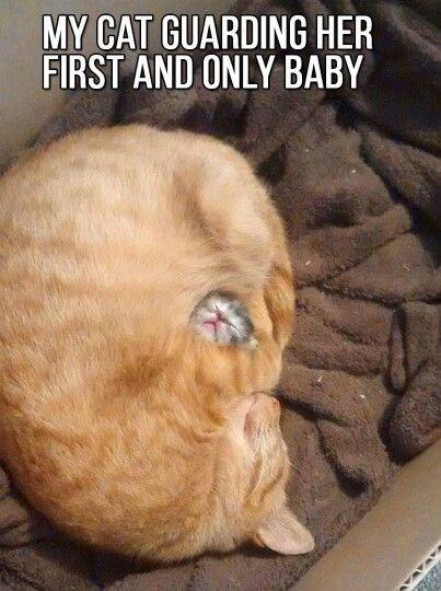 Good mommy