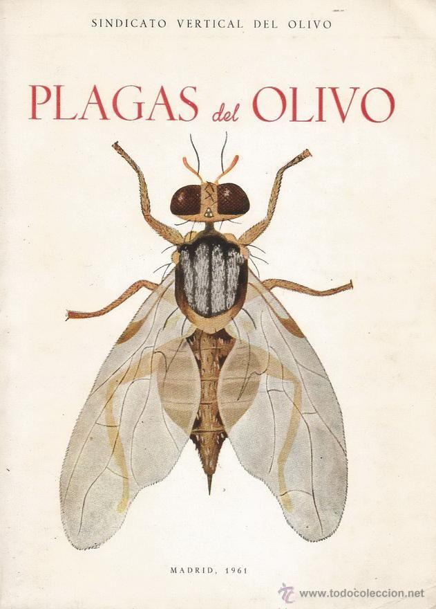 VV. AA. Plagas del Olivo. RM66800.