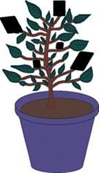 In this activity, learners find out what happens when they cover leaves with pieces of black construction paper. This activity shows learners that plants need sunlight to survive. Use this activity to talk about what plants and animals need to survive.