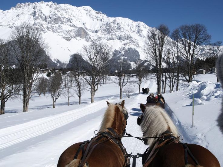 Indulge yourself in the horse drawn sleigh ride as a Christmas treat in the scenic countryside around Salzburg with Tourboks.