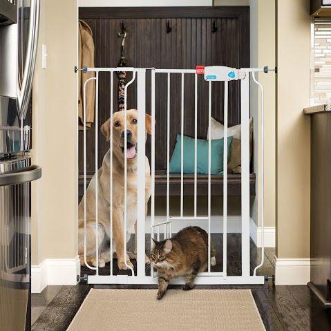 Carlson Extra Tall Pet Gate with Small Pet Door - $37.99. https://www.tanga.com/deals/d9538c07f5c3/carlson-extra-tall-pet-gate-with-small-pet-door