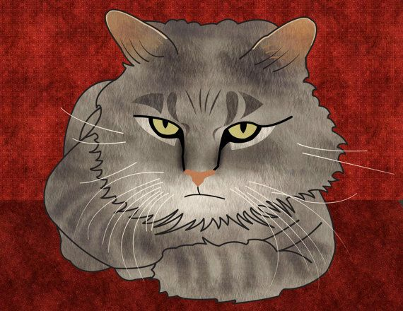 Custom pet portrait custom cat portrait portrait from by catbrush