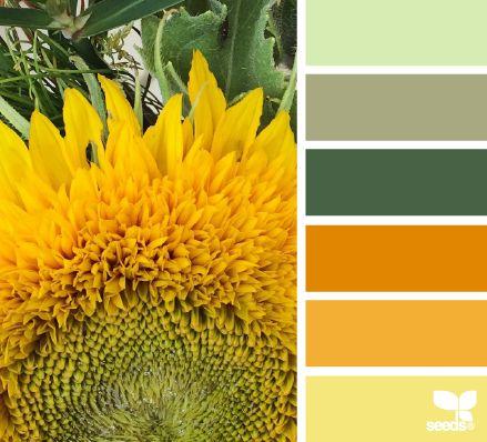 sunny hues - voor meer kleur inspiratie kijk ook eens op http://www.wonenonline.nl/interieur-inrichten/kleuren-trends-2014/