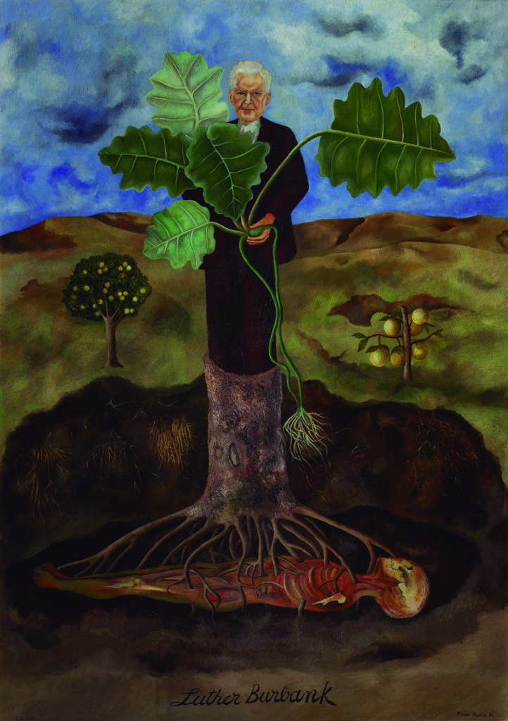 Frida Kahlo, Portrait of Luther Burbank, 1931Museo Dolores Olmedo, Xochimilco, Mexico© 2015 Banco de México Diego Rivera Frida Kahlo Museums Trust, Mexico, D.F. / Artists Rights Society (ARS), New Yo