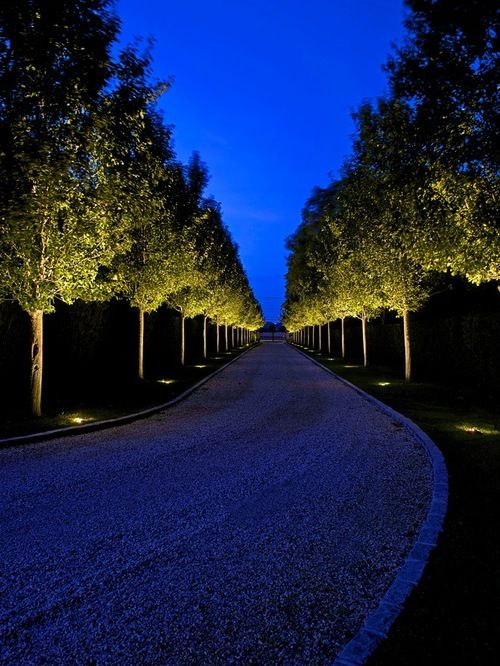 trees uplighter for long driveway in traditional landscape style of 10 Divine Ideas of Driveway Lighting