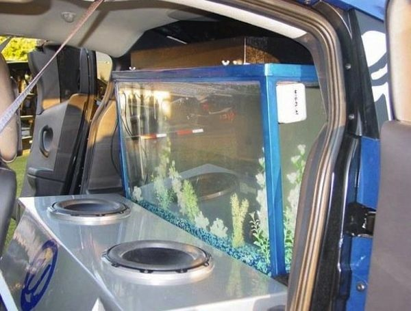 Usher got the fine folks of Acrylic Tank Manufacturing (featured in Tanked) to make him an aquarium in the back of this car!