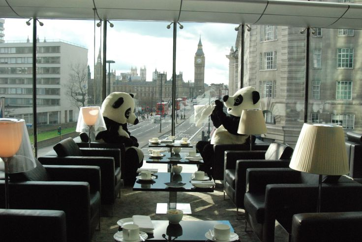 Parched Pandas at Park Plaza Westminster Bridge