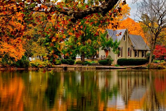 The fall leaves in Bucks County in my home state of PA