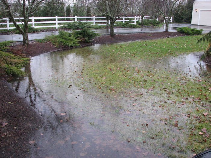1000 images about yard flooding solutions on pinterest for Backyard flooding solutions