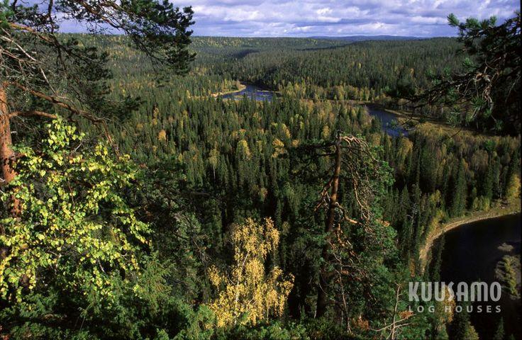 #bosques de Kuusamo, Finlandia, de donde se extrae la #madera de pino nórdico con la que Kuusamo Houses España realiza sus casas