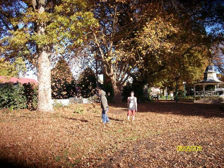 Nothing like Autumn in the southern highlands