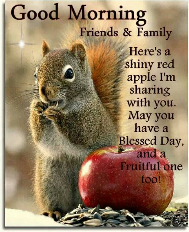 Good Night Peeps Quotes: 101 Best Images About Blessing Day On Pinterest