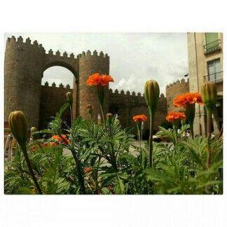 #Ávila. #cristinatiad