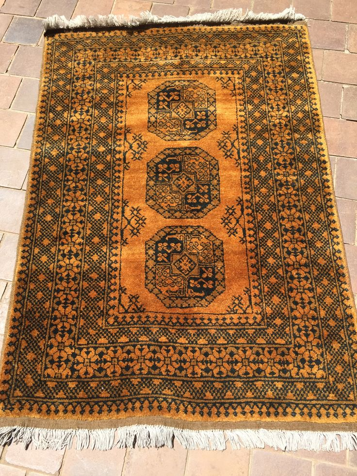 golden afghan  rare for sale call 0829577823 or email rlidchi@gmail.com