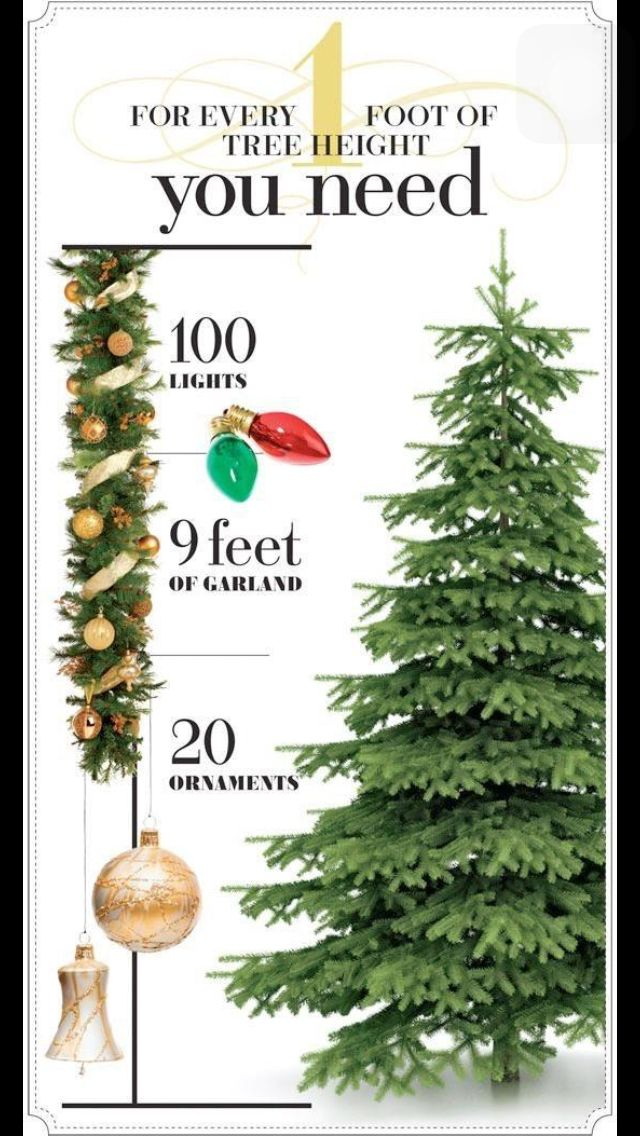 What you need for your tree.