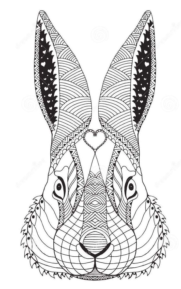 Coloring pages quail - Zentangle Face Of Rabbit Art Coloring Sheet