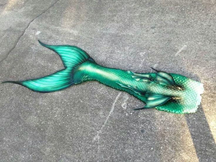 Sweet Mint Mermaid Tail Heirs Of Atlantis Pinterest
