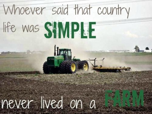 I may not have grown up on the farm, but I know that those kids worked their butts off. Hats off to them.