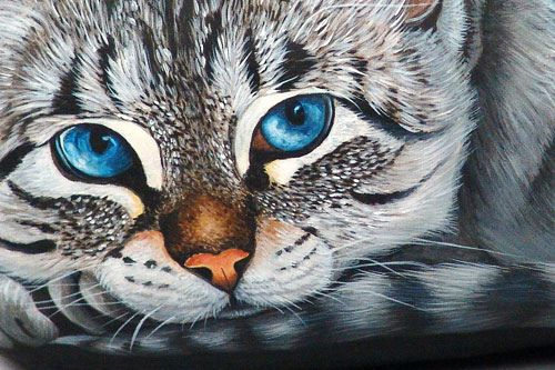 Detail of cat painted on a river rock