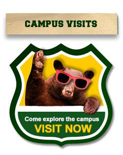 Visit #Baylor, in-person or online!
