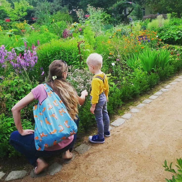 Blumen Botanischen Garten Kenn Kennenlernen Pflanzen Und Blumen Und Pflanzen Im Botanischen Garten Kenn Diy Plant Stand Diy Plants Vera Bradley Backpack