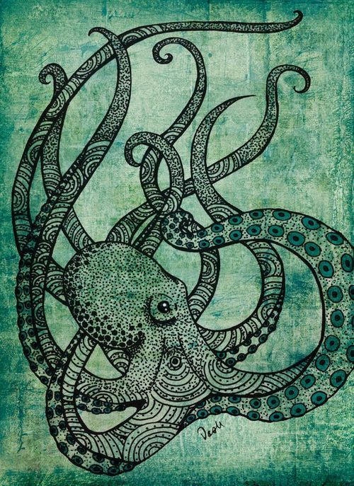 Line Art Octopus : Octopus illustration arms pinterest