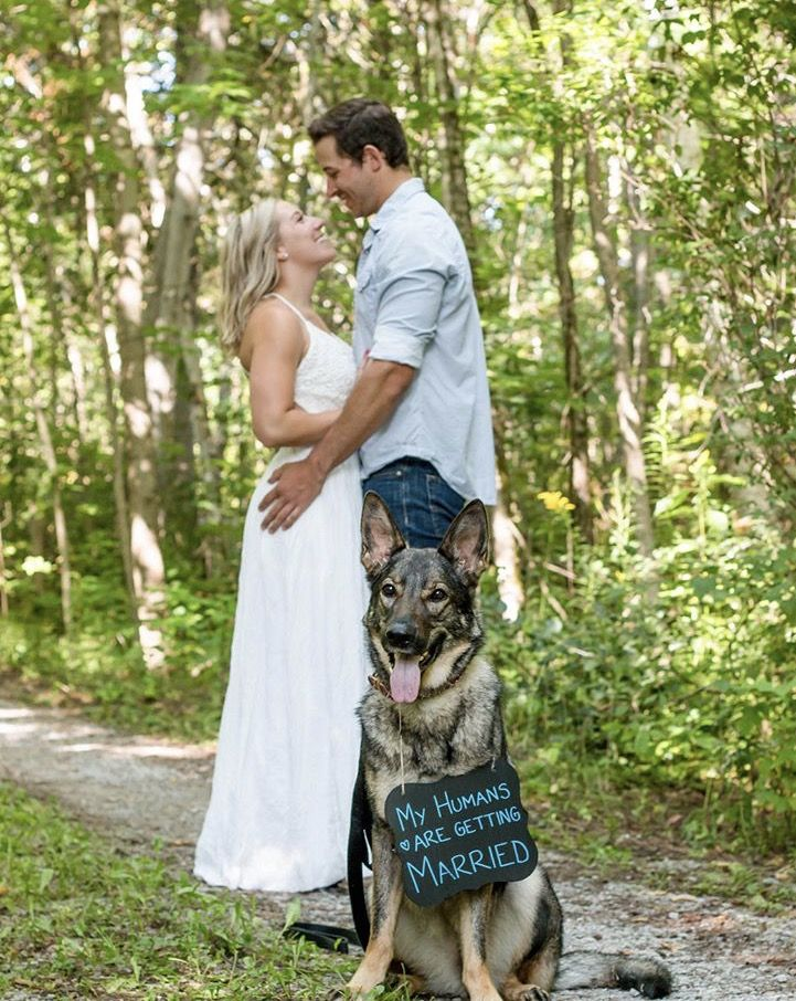 #Engagement #dog #wedding
