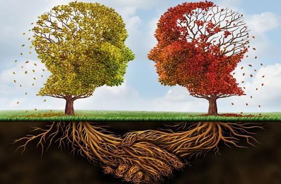 Hay muchos tipos de psicólogos que se diferencian en su especialidad. Aprende a diferenciarlos para acudir al profesional más adecuado.