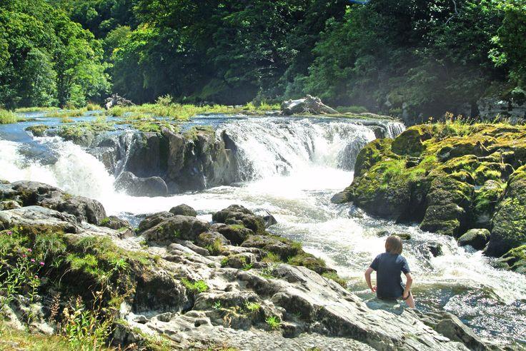 Cenarth Falls, Nr Cardigan, West Wales, UK