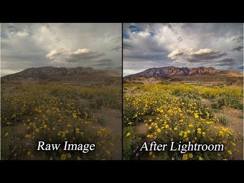 These are my favorite lenses on the Fuji mirrorless system. I think it's worth…