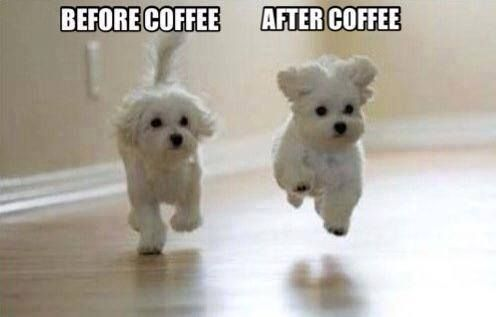 Before coffee.  After coffee.    Come to Bagels and Bites Cafe in Brighton, MI for all of your bagel and coffee needs! Feel free to call (810) 220-2333 or visit our website www.bagelsandbites.com for more information!