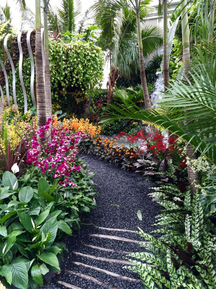 Best 25+ Small tropical gardens ideas on Pinterest | Small ...