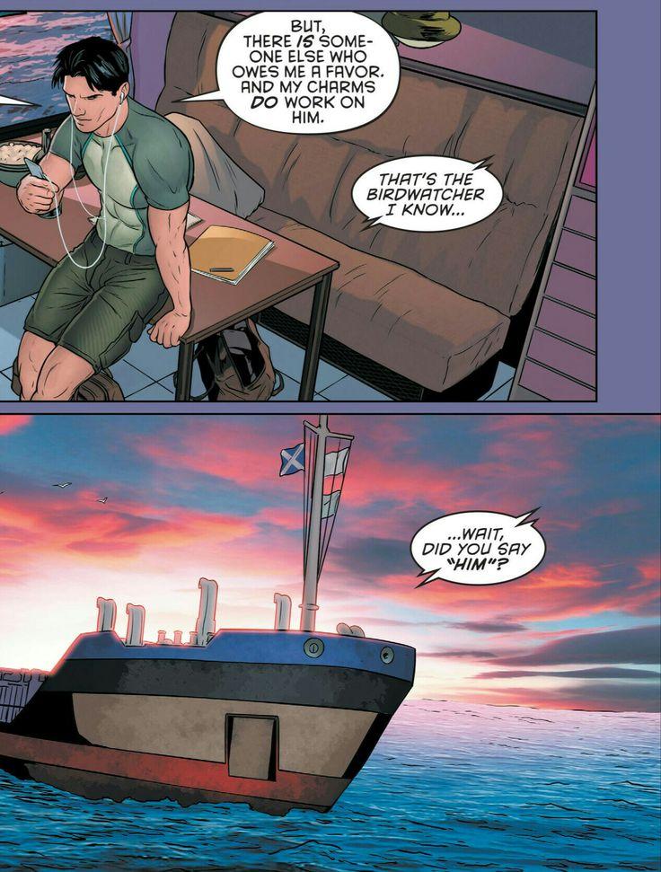 Grayson 13. Dick Grayson. Agent 37. Tim Drake. Red Robin.