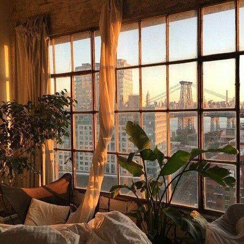 city, plants, and sun image